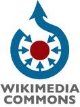 My Wikimedia Commons Profile