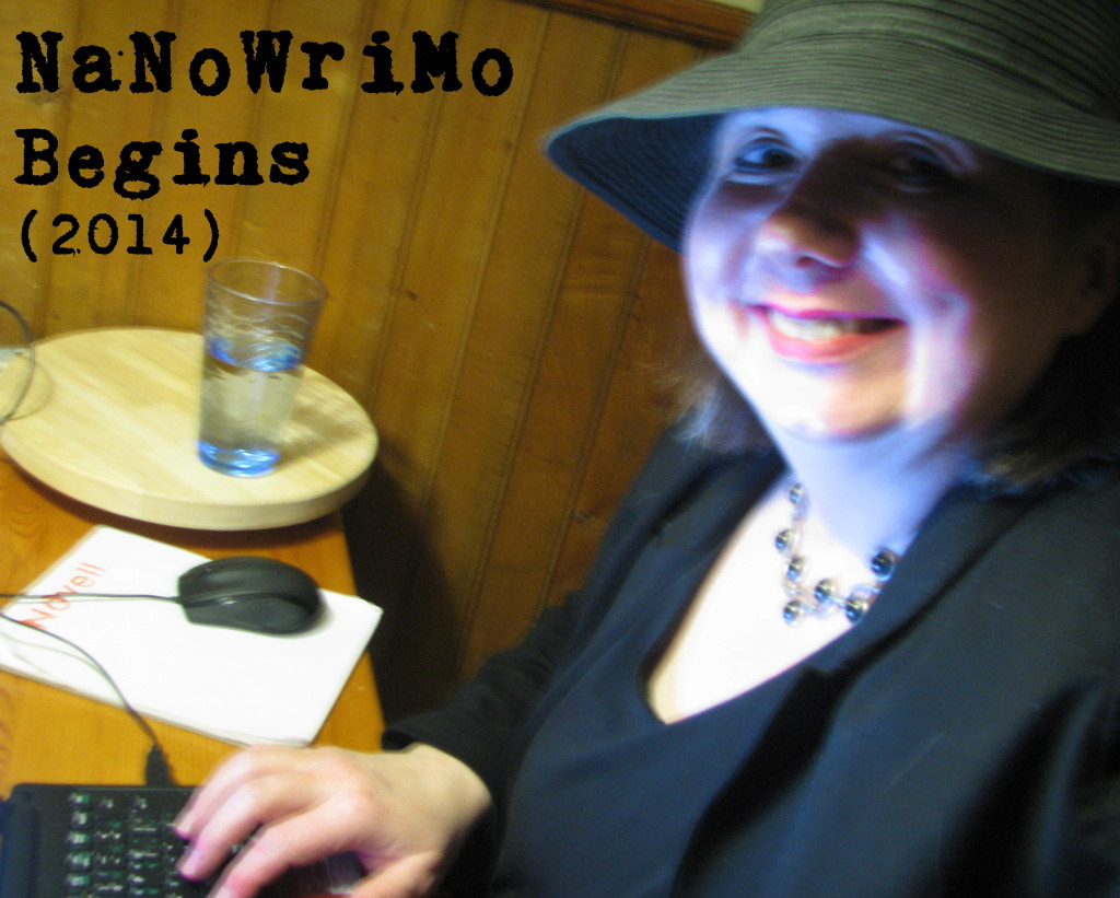 NaNoWriMo Begins (2014 edition)